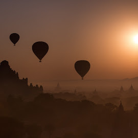 Sunrise in Bagan by Joyce Chang - Landscapes Sunsets & Sunrises ( temples, myanmar, sunrise, hot air balloons, bagan )