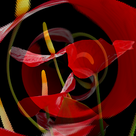 Red, Black and Yellow by Tina Dare - Digital Art Abstract ( abstract, whirl, red, patterns, red and black, designs, shapes )