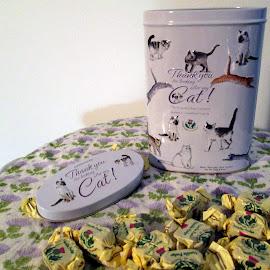 Vanilla Fudge from Scotland by Isabella Scotti - Food & Drink Candy & Dessert