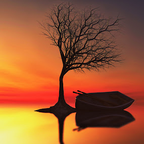 sunset-tree.jpg