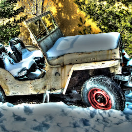 Willys Jeep by Judy Soper - Landscapes Travel ( car, bass pro shop, jeep, turkey, raccoon )