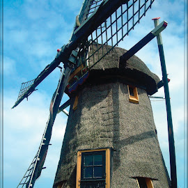 Doeshofmolen by Pete Bobb - Buildings & Architecture Public & Historical ( thatched, riet, waterpump, leiderdorp, holland, doeshofmolen, 8 sided )