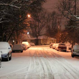 Snowstorm January 2014 by Jim Dicken - News & Events Weather & Storms