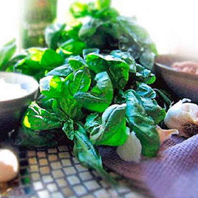 Our Favorite Basil Pesto
