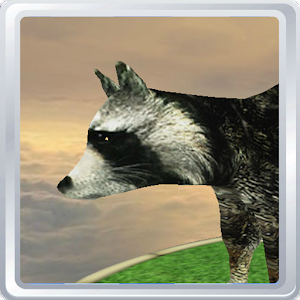 Virtual Pet 3D -  Raccoon