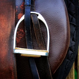 Leather by Mari du Preez - Artistic Objects Other Objects ( wood, metal, saddle, horse, leather )