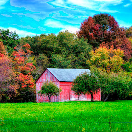 Autumn colors by Phil Deets - Landscapes Forests ( barn, colorful, autumn, pennsylvania, rural )