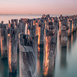Pastel Sunrise by Phil Hanna - Buildings & Architecture Other Exteriors ( haze, pastel, wood, sunset, sea, pier, long exposure, pink, ocean, sunrise )