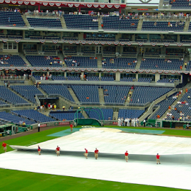 Rain Delay at National's Park by Jane Jenkins - Sports & Fitness Baseball ( rain delay, baseball, stadium, sports, grounds crew,  )