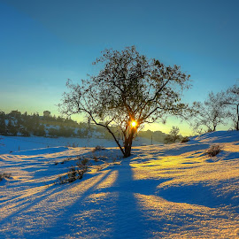 Snow in jordan by بلال الناطور - Landscapes Weather ( amman, blue, jordan, beautiful, snow )