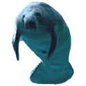 Manatee Full Sticker Donation icon