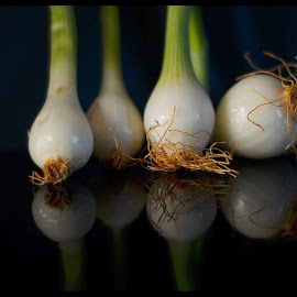 Spring Onions by Prasanta Das - Food & Drink Fruits & Vegetables ( onions, fresh, bulbs, spring )