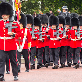 Guard by Dan Stelian Sala - News & Events Entertainment ( pace, london, events, change, guard, buckingham )