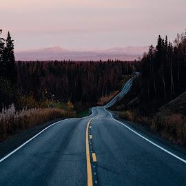 Alaskan Road by Forrest Mankins - Landscapes Travel ( clouds, adventure, nature, highway, sunset, street, alaska, trees, pink, trip, travel, road )
