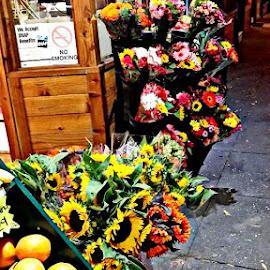 by Hazel Malmede - City,  Street & Park  Markets & Shops