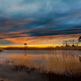 Birds over Point Lookout by David Kiel - Landscapes Sunsets & Sunrises ( chesapeake, cheasapeak, md, sunset, point lookout )