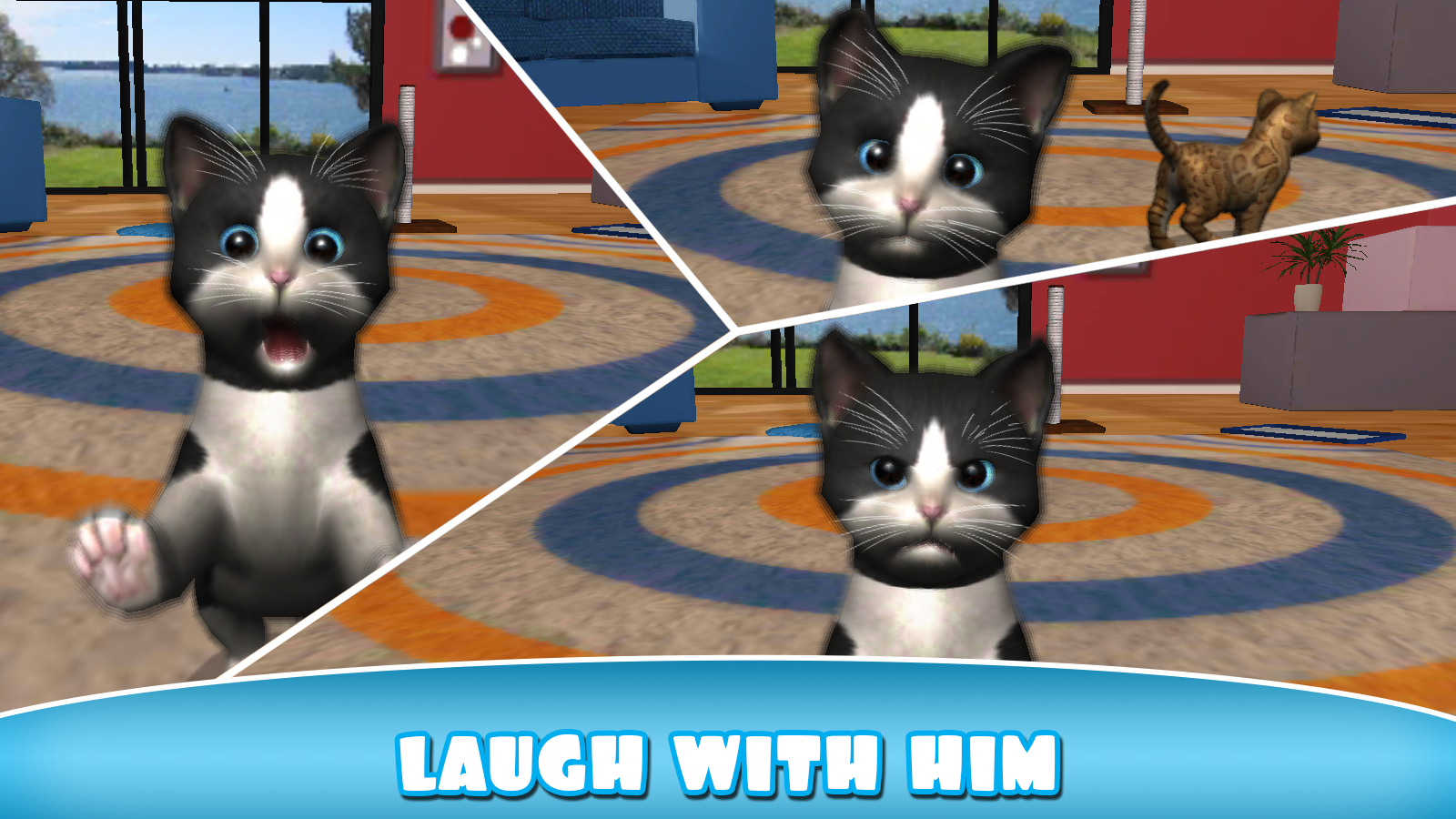 Daily Kitten : virtual cat pet Screenshot 15