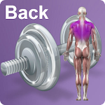 Daily Back Video Workouts APK Image