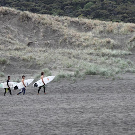 Surfers at Karekare by Suzi Lloyd - Sports & Fitness Surfing