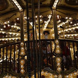 A Beautiful Carousel ! by Linda Blevins - City,  Street & Park  Amusement Parks ( lights, beautiful, carousel, kids )