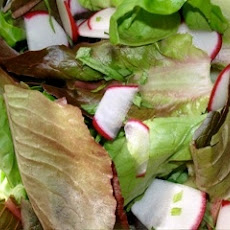 Red Leaf And Radish Salad With Tarragon Vinaigrette