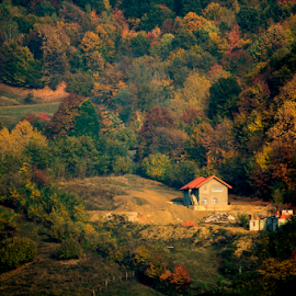 The house by Diaconu Daniel - Landscapes Forests