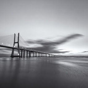 The B&W Bridge... by Rui Catarino - Black & White Buildings & Architecture ( vasco da gama, parque tejo, ponte, b&w, p&b, bridge, lisboa )