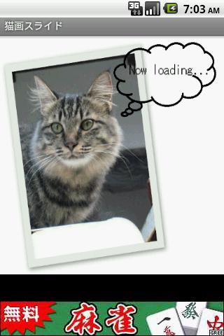 猫画スライド