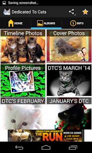 Dedicated to Cats - Page2App - screenshot