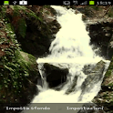 River cascade Live Wallpaper icon
