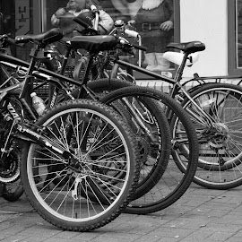 Parked by Shelly Priest - Transportation Bicycles ( bicycles, park, black and white, street, wheels,  )