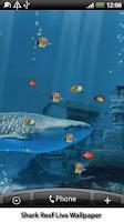 Screenshot of Shark Reef Live Wallpaper
