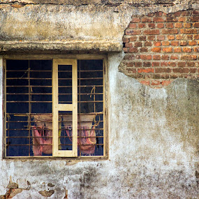 street scene by Nirav Raval - Buildings & Architecture Decaying & Abandoned ( old house, old wall, window, texture, door, canvas, old window, window wall, canvas window, wall )