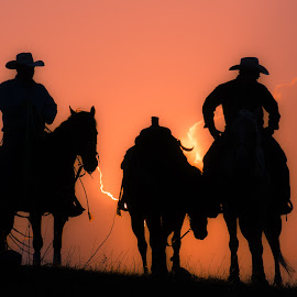Nightwatch by Gary Hanson - Sports & Fitness Rodeo/Bull Riding ( hill, cowboy, waits, teamsundown, sunset, rodeo )
