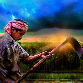 by Anup Biswas - Digital Art People ( sun set, farmer, man. people, candid )