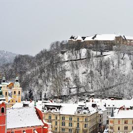 Ljubljana castle by Tereza Létalová - City,  Street & Park  Skylines ( winter, city in the snow, ljubljana, castle, city, , snow, cold )