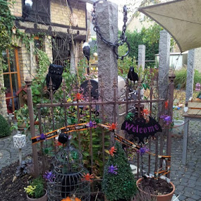 Halloween decorations by Joe Harris - Public Holidays Halloween
