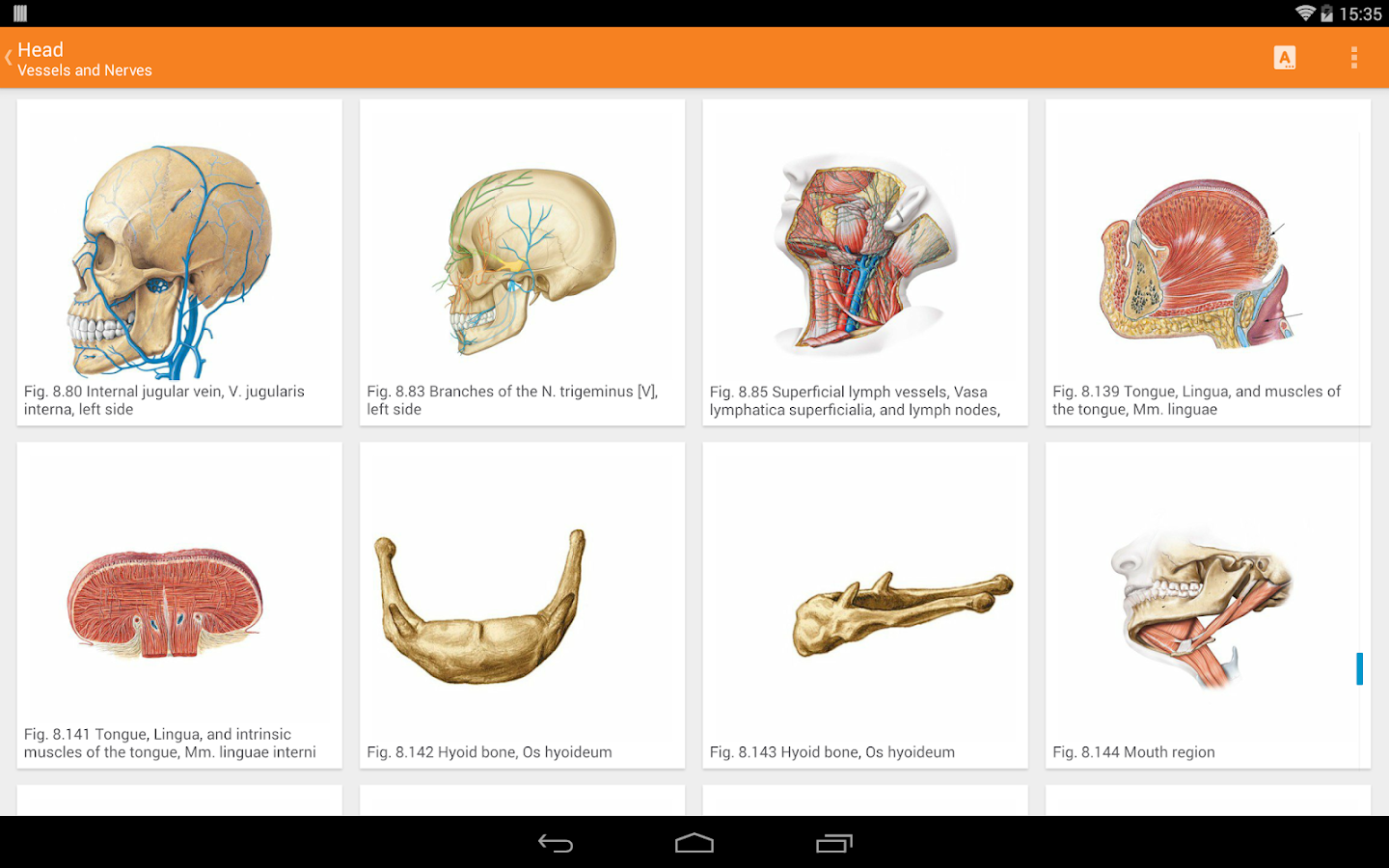 Sobotta Anatomy Atlas Screenshot 9