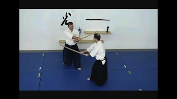 Screenshot of Aikido Weapons Free