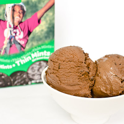 Chocolate Thin Mint Ice Cream