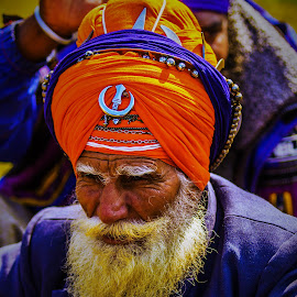 Fierce Fighters by Avanish Dureha - People Portraits of Men ( colourful people, sikh, punjab, dureha@gmail.com, incredible india, nihang, avanish dureha )