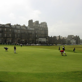 St. Andrews by Maruša Rizmal - Sports & Fitness Golf