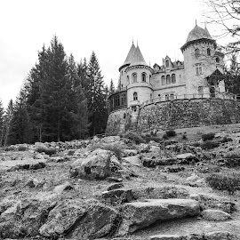 Castle by Mauro Amoroso - Buildings & Architecture Statues & Monuments ( gressoney, aosta, savoia, castle )