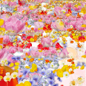 flower livewall icon