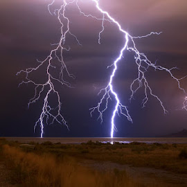 Lightning Great Salt Lake by Scott Stringham - Landscapes Weather ( bolt, stringham, landscape, salt lake city, photography, strike, nature, pacific flyway, dark, electrical storm, thunder storm, storm tracking, clouds, thunder, scott stringham, water, sand, lightning strike, great salt lake, desert, thunderstorm, electric, very good night, gsl, www.rustlingleafdesign.com, lightning, electrical, utah, cloud, night, earth, rustlingleafdesign, salt, great basin, its big enough for all )