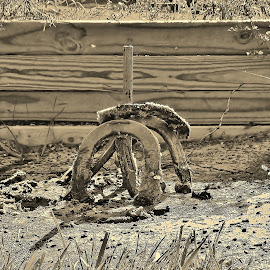 End of Horseshoe Days. by Jeff Evans - Novices Only Sports ( black and white, autumn, still life, sport, horseshoes, game )