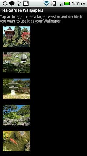 Tea Garden Wallpapers - Free