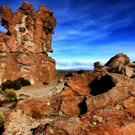 Abstract rocks by Guy Gillade - Landscapes Caves & Formations ( andes, abstract rocks, bolivia )