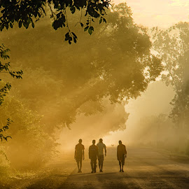 Rays Lit Street by KP Singh - City,  Street & Park  Neighborhoods ( neelon, stret, ludhiana, sun, rays )