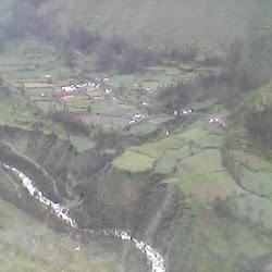 Cachupia